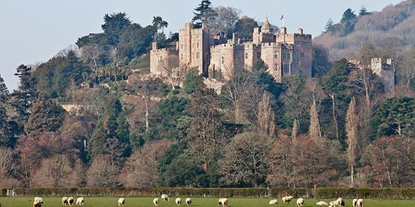 Dunster castle and its surrounding grounds