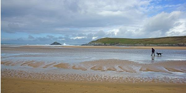 A dog and its owner walk along Crantock beach