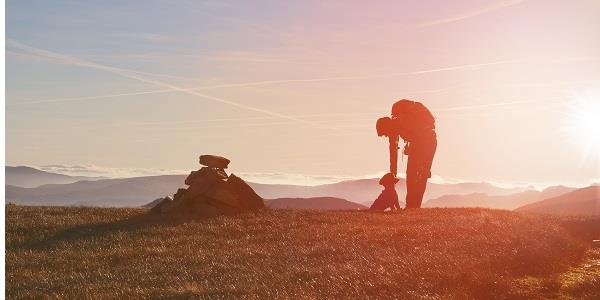 A hiker and their dog in Grizedale Forest as the sun sets