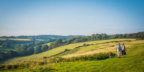A couple walking their dog through grassland, with a spectacular panoramic view of Eggesford Forest in front of them