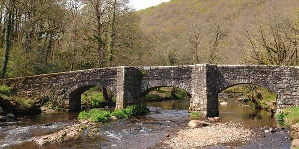A view of Fingle Bridge